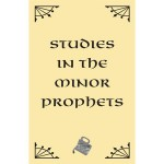 Minor Prophets cover for website